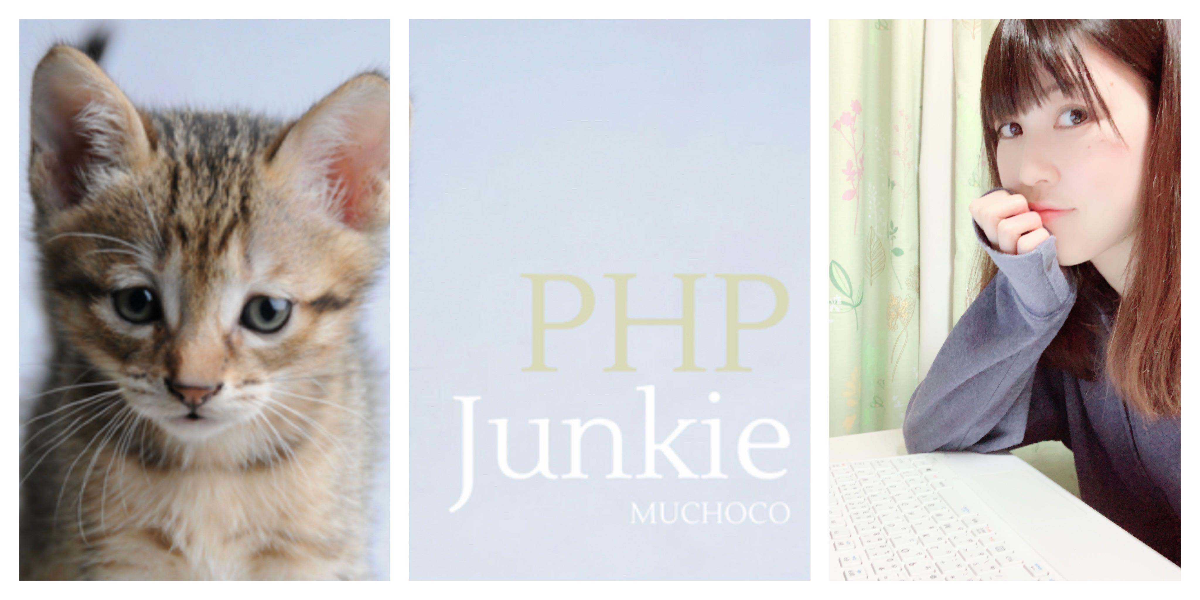 PHP Junkie